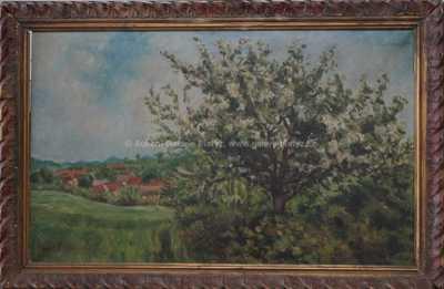 Svatopluk Havrlík - Rozkvetlá jabloň