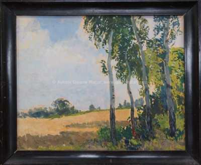 Gustav Macoun - Břízy u pole