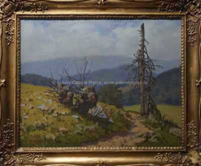 František Cína - Jelínek - Kopcovitá krajina