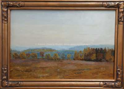 Roman Havelka - Pohled do krajiny