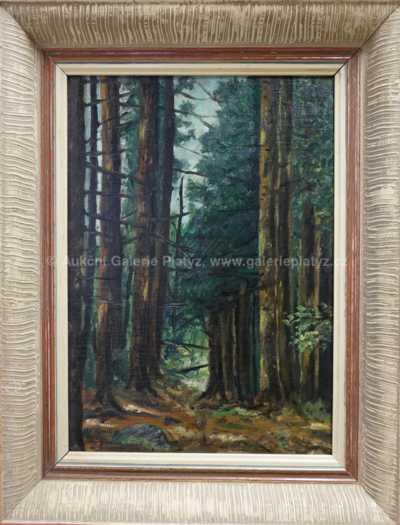 Oldřich Koníček - V lese