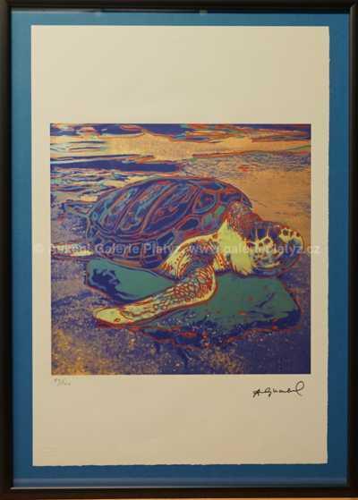 Andy Warhol - Želva