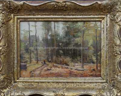 Josef Procházka - V lese