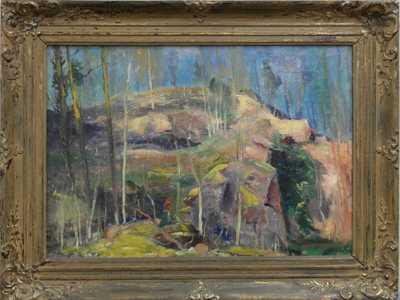 Karel Jan Sigmund - Pod skalou