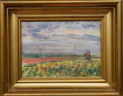 Vojtěch  Sedláček - Pole před bouří