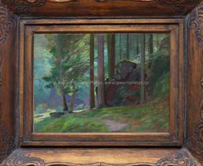 Roman Havelka - Skála v lese