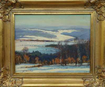 Alois Kalvoda - Zimní pohled do kraje