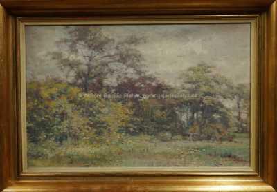 Louis Van Engelen - Na okraji lesa