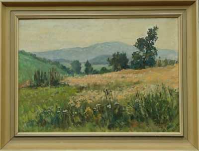 Jaromír Kunc - Na okraji pole