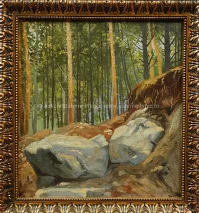 František Klimeš - Balvany v lese