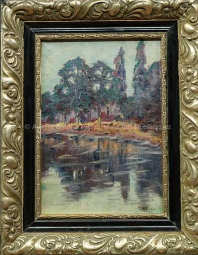 Robert Holzer - Stromy u řeky