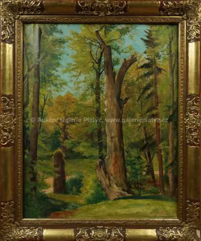 Karel Jan Sigmund - Vzrostlé stromy
