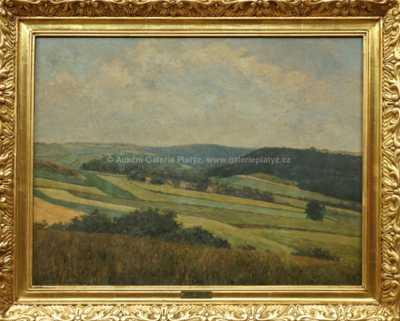 Josef Holub - Pohled do krajiny