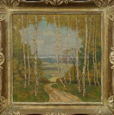 Karel Schadt - Průhled lesem