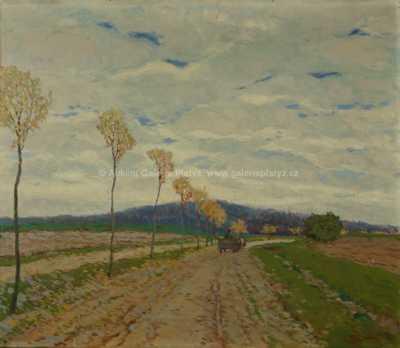 Karel Schadt - Povoz na cestě