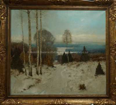 Karel Schadt - Zimní vesnice