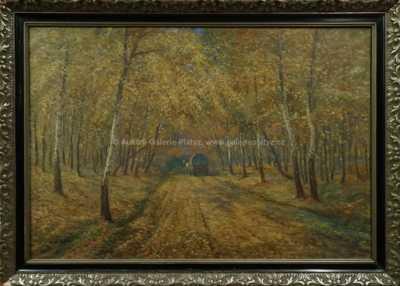 Josef  Svoboda - Podzimní motiv