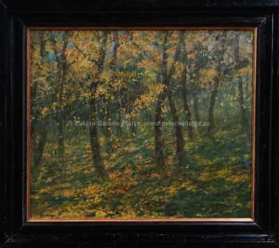 Josef Soukup - Podzim v lese
