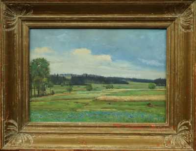 Josef Jambor - Chrpové pole