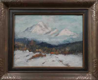 Karel Schadt - Pod horami