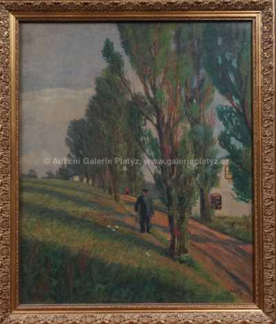 Čeněk Choděra - Muž na procházce