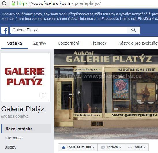 Obrázek Galerie Platýz na FB